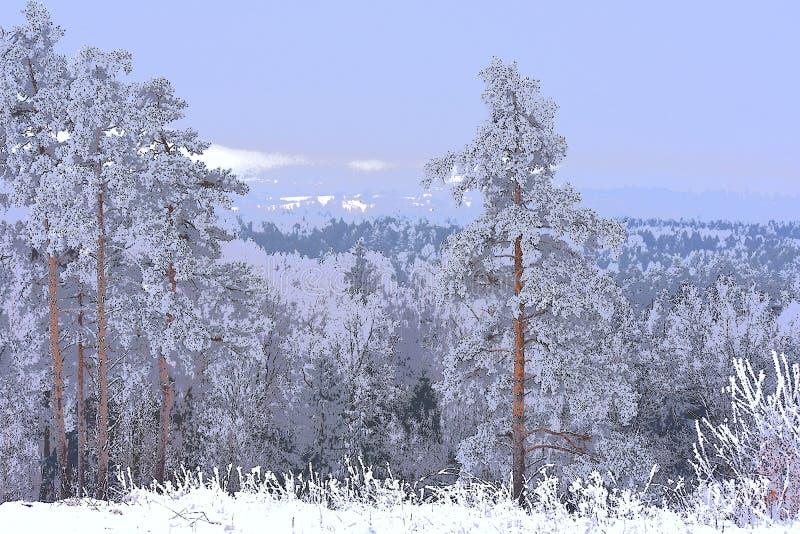 χειμώνας έκδοσης απεικόνισης 0 8 διαθέσιμος eps _ Άποψη από το hillfort στοκ φωτογραφίες