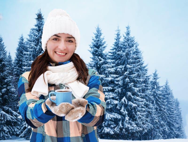 χειμώνας δέντρων τοπίων Χριστουγέννων noel στοκ εικόνα με δικαίωμα ελεύθερης χρήσης