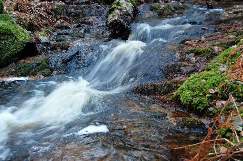 χειμώνας δινών ρευμάτων πτώσεων στοκ εικόνες με δικαίωμα ελεύθερης χρήσης