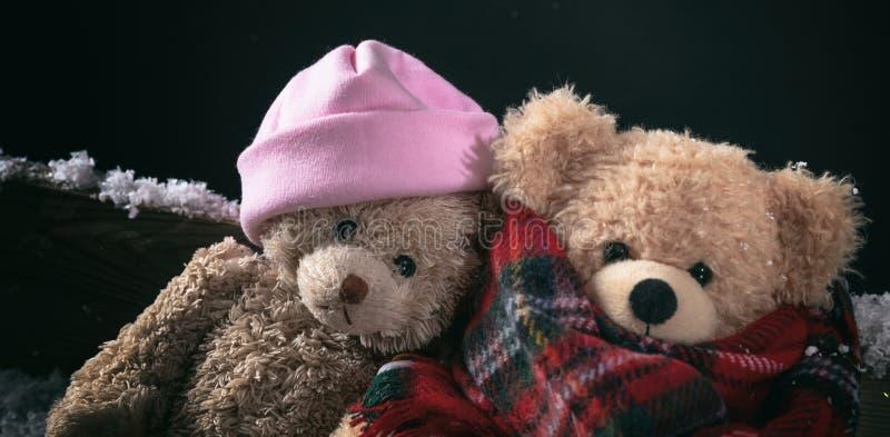 Χειμώνας, κρύος καιρός, αγάπη Teddy αρκούδες ζεύγους που κάθονται σε έναν χιονισμένο πάγκο, άποψη κινηματογραφήσεων σε πρώτο πλάν στοκ εικόνες με δικαίωμα ελεύθερης χρήσης