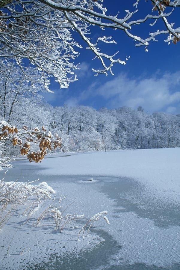 χειμώνας λιμνών αιθουσών στοκ εικόνα με δικαίωμα ελεύθερης χρήσης