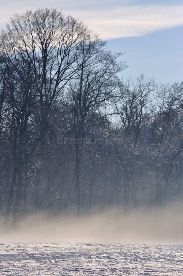Χειμώνας με την υδρονέφωση στοκ εικόνες