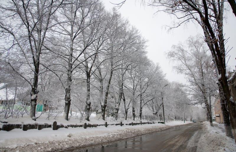 χειμώνας μονοπατιών στοκ φωτογραφίες με δικαίωμα ελεύθερης χρήσης