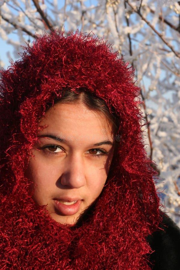 χειμώνας ομορφιάς στοκ εικόνες με δικαίωμα ελεύθερης χρήσης
