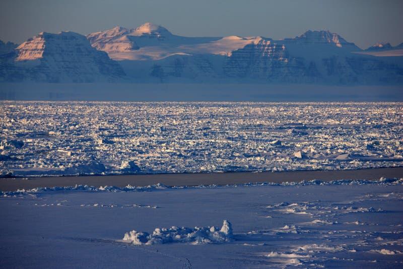 χειμώνας πακέτων πάγου της στοκ εικόνες