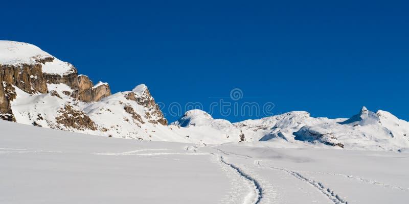 χειμώνας πανοράματος στοκ εικόνες με δικαίωμα ελεύθερης χρήσης