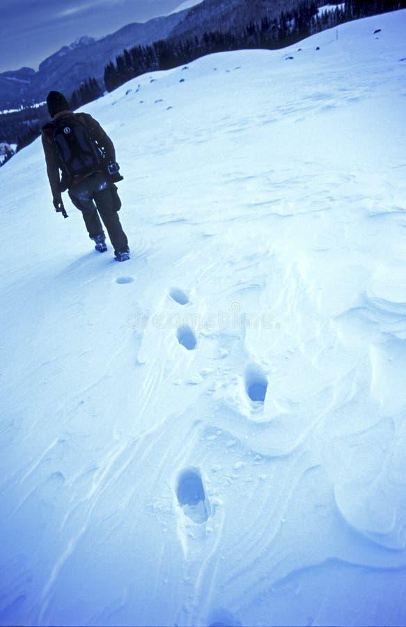 χειμώνας πεζοπορίας στοκ εικόνες