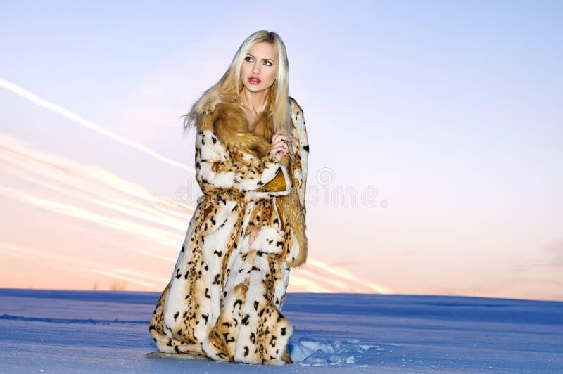 χειμώνας πορτρέτου στοκ φωτογραφία με δικαίωμα ελεύθερης χρήσης