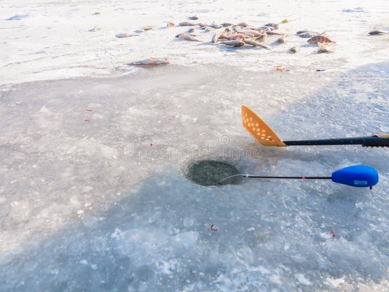 Χειμώνας που αλιεύει στον πάγο στοκ φωτογραφίες