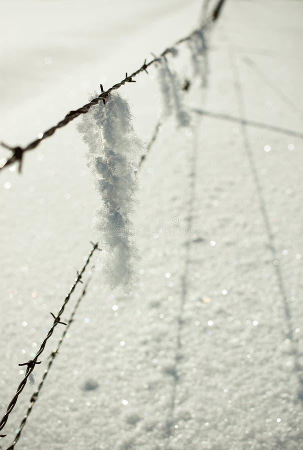 Χειμώνας σε οδοντωτό - καλώδιο στοκ εικόνες