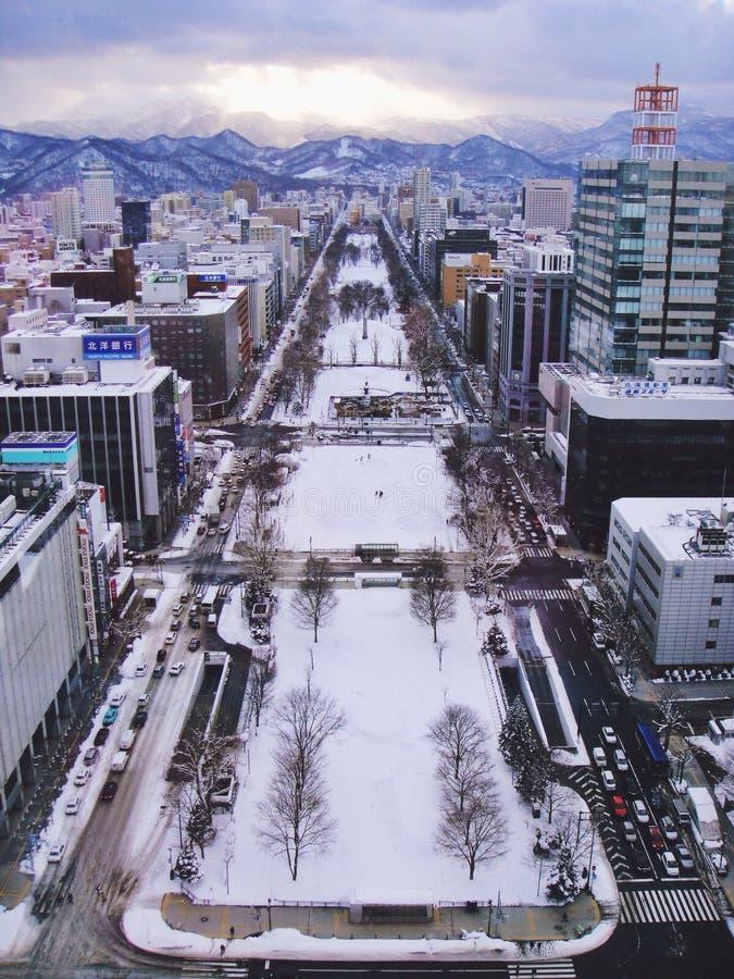 Χειμώνας σε Sapporo στοκ εικόνα με δικαίωμα ελεύθερης χρήσης