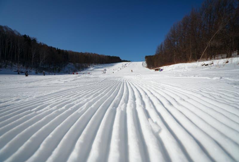 χειμώνας σκι θερέτρου στοκ εικόνα με δικαίωμα ελεύθερης χρήσης
