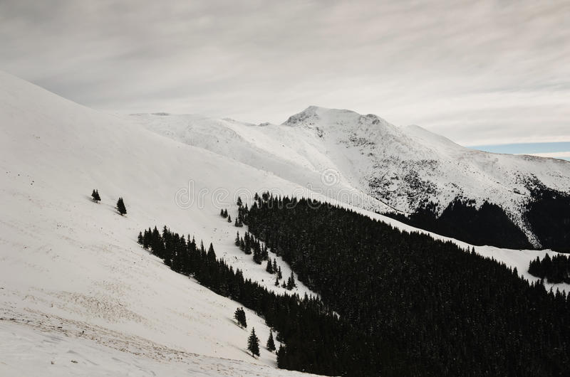Χειμώνας στα βουνά Parang στοκ εικόνα με δικαίωμα ελεύθερης χρήσης