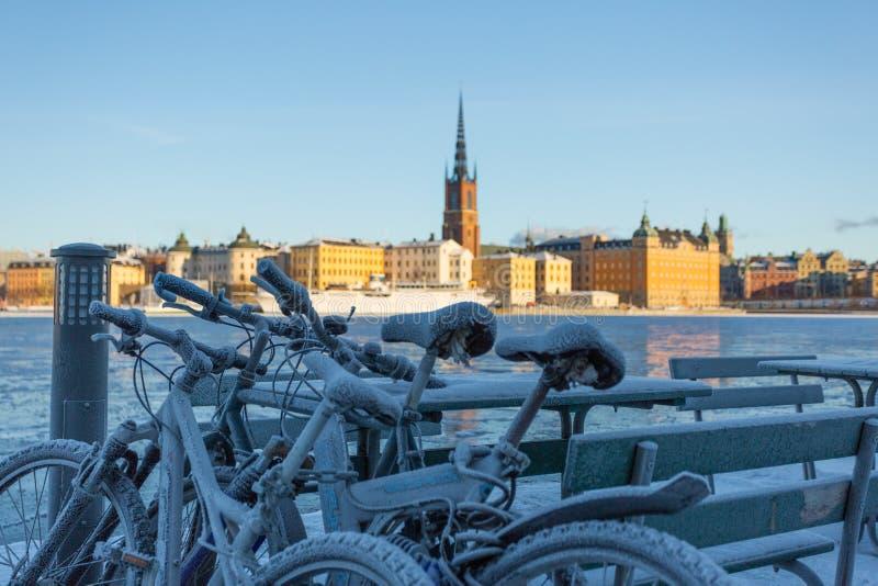 Χειμώνας στη Στοκχόλμη, Σουηδία, Ευρώπη στοκ εικόνα