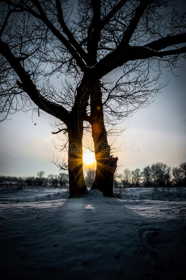 Χειμώνας στο Γιορκσάιρ Χιονώδης ουρανός τομέων και βραδιού στοκ εικόνα