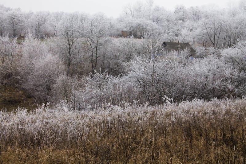 Χειμώνας στο χωριό στοκ εικόνες με δικαίωμα ελεύθερης χρήσης