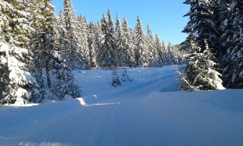 χειμώνας της Νορβηγίας στοκ φωτογραφίες με δικαίωμα ελεύθερης χρήσης