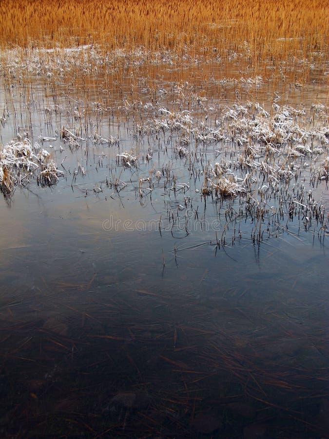 χειμώνας της Σκωτίας καλά στοκ φωτογραφία