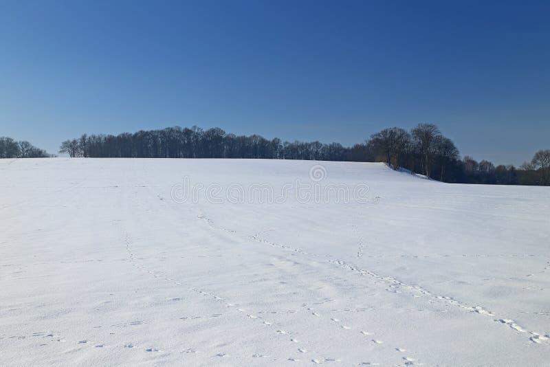 χειμώνας τοπίων της Γερμα&nu στοκ φωτογραφία με δικαίωμα ελεύθερης χρήσης