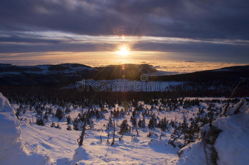 Download χειμώνας τοπίων στοκ εικόνες. εικόνα από πεύκο, συμπαθητικός - 17057014