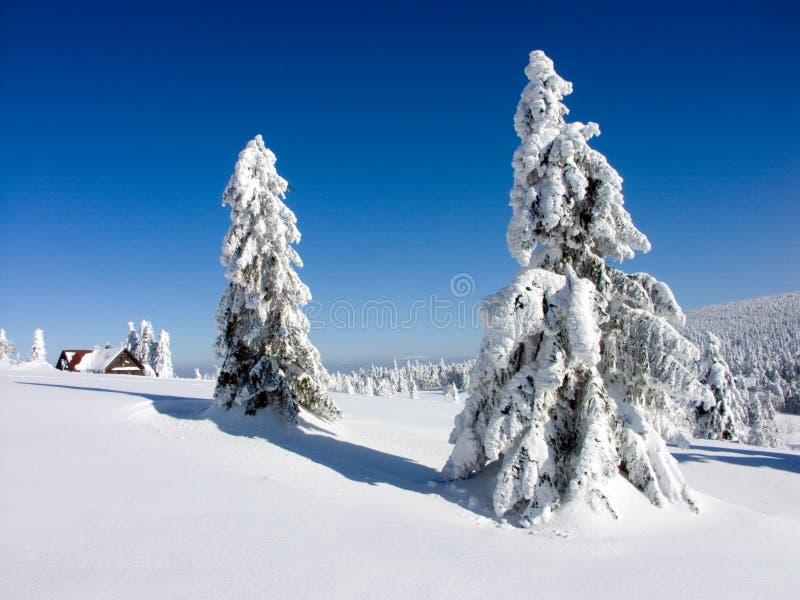 χειμώνας Τσεχιών στοκ εικόνες με δικαίωμα ελεύθερης χρήσης