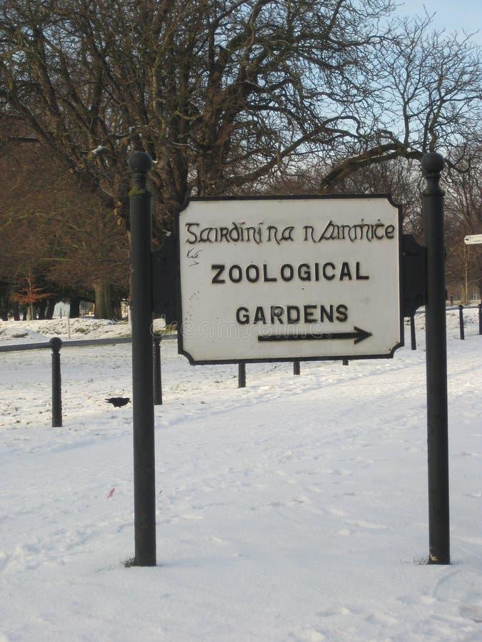 Χειμώνας, χιόνι, πάρκο του Δουβλίνου, Ιρλανδία, Φοίνικας, ζωολογικός κήπος στοκ φωτογραφίες με δικαίωμα ελεύθερης χρήσης