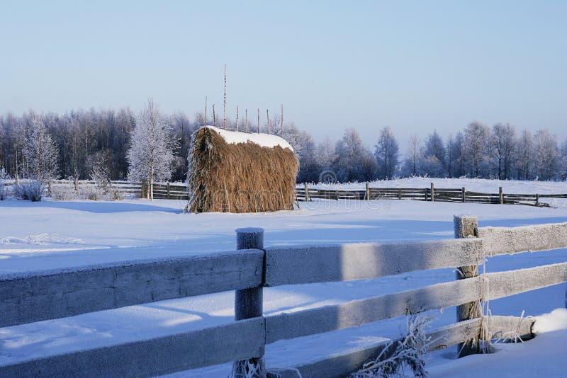 Χειμώνας landsgape με την αρχική θυμωνιά χόρτου και τον παλαιό ξύλινο φράκτη στο βαθύ χιόνι και hoarfrost στοκ εικόνες