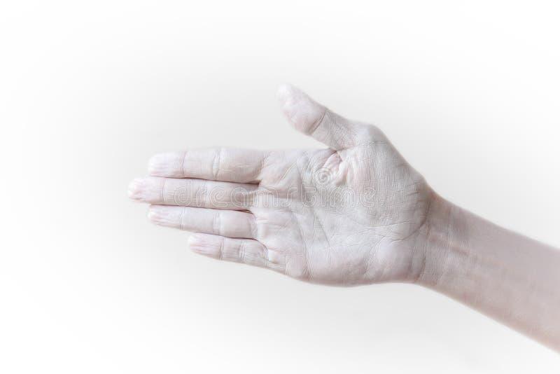 Χειρονομίες, θέσεις και εκφράσεις με τα θηλυκά χέρια και τα δάχτυλα στοκ φωτογραφίες με δικαίωμα ελεύθερης χρήσης