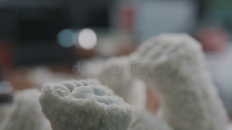 χειροποίητος Λεπτομέρειες της teddy αρκούδας Το σπάνιο συλλέξιμο παιχνίδι είναι μια teddy αρκούδα στοκ εικόνες