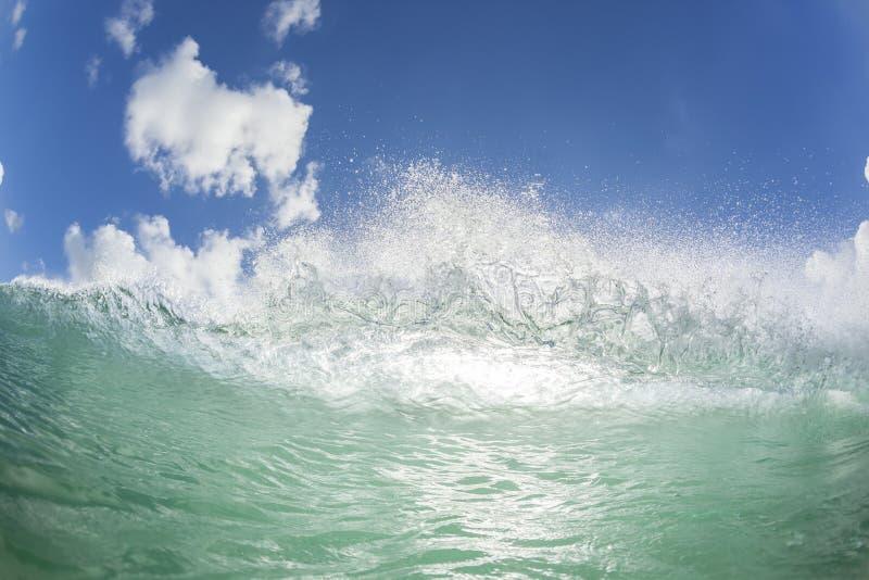 Χειλική κολύμβηση κυμάτων στοκ εικόνες με δικαίωμα ελεύθερης χρήσης