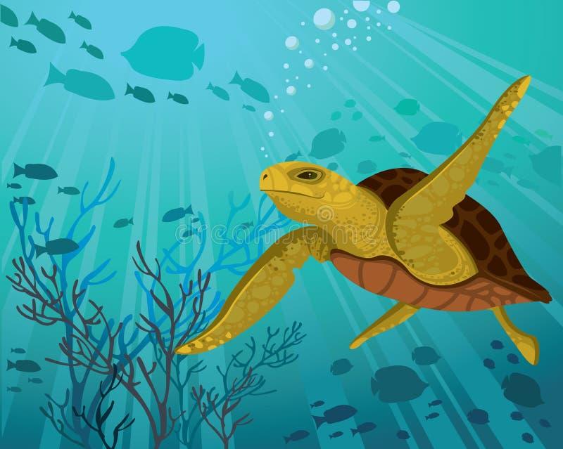 χελώνα θάλασσας διανυσματική απεικόνιση