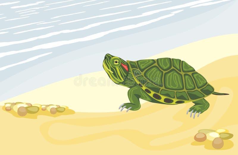 Χελώνα στην αμμώδη ακτή απεικόνιση αποθεμάτων