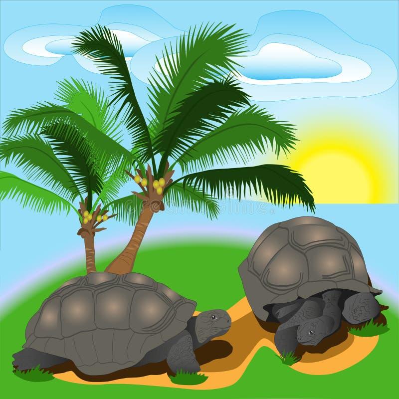 Χελώνα στο νησί απεικόνιση αποθεμάτων