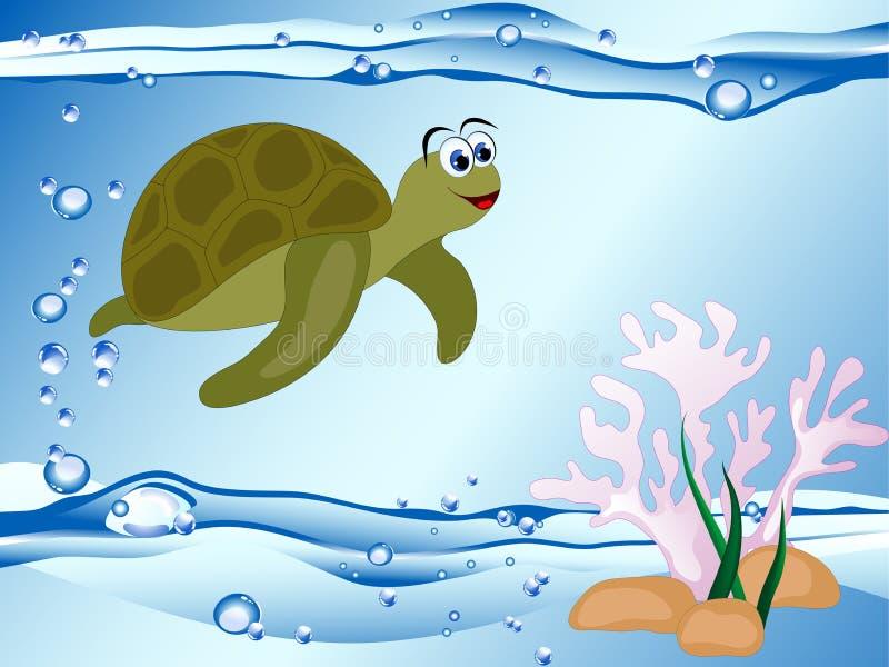 Χελώνα και κοράλλι ελεύθερη απεικόνιση δικαιώματος