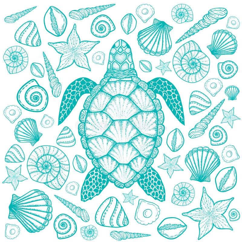 Χελώνα και κοχύλια θάλασσας στο ύφος τέχνης γραμμών Συρμένη χέρι διανυσματική απεικόνιση Σύνολο ωκεάνιων στοιχείων απεικόνιση αποθεμάτων