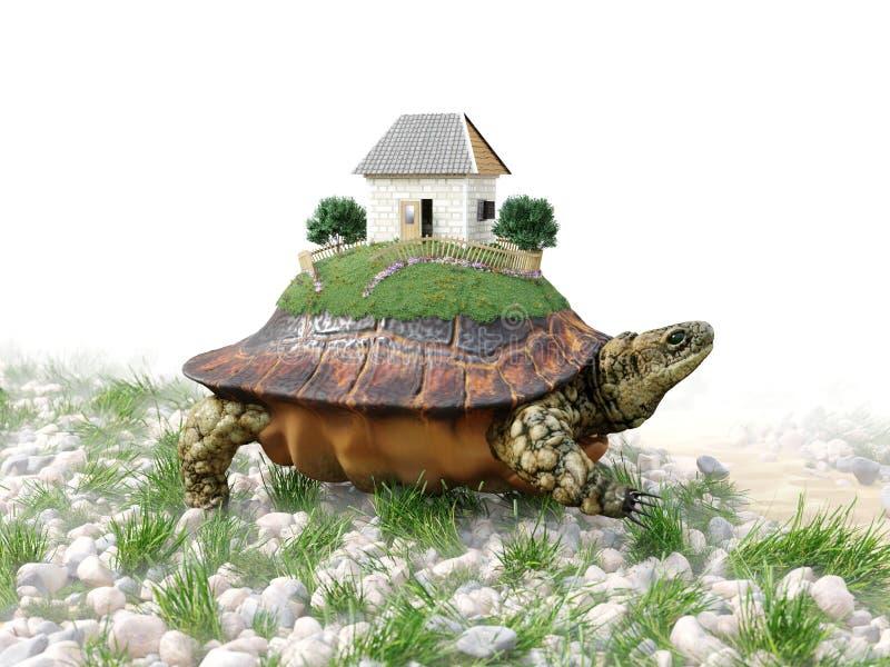 Χελώνα με το σπίτι παιχνιδιών από την επιχειρησιακή έννοια ακίνητων περιουσιών εγγράφου στοκ φωτογραφίες