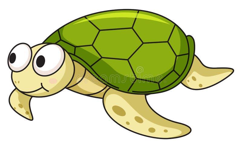 Χελώνα απεικόνιση αποθεμάτων