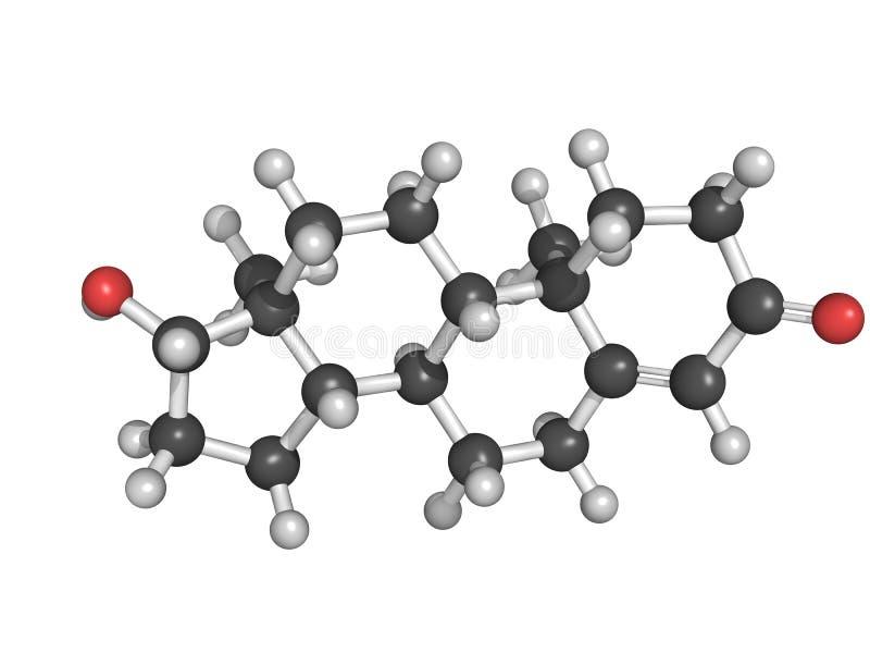 Χημική δομή της τεστοστερόνης διανυσματική απεικόνιση