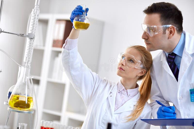 Χημική φιάλη εκμετάλλευσης ερευνητών σπουδαστών στο εργαστήριο στοκ εικόνες με δικαίωμα ελεύθερης χρήσης