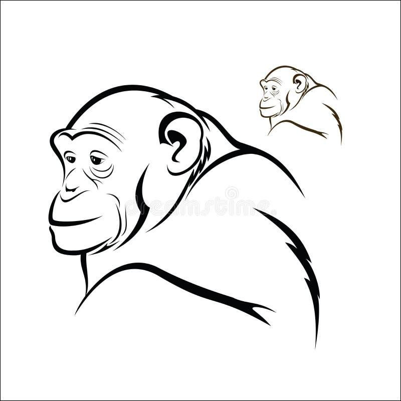 χιμπατζής απεικόνιση αποθεμάτων