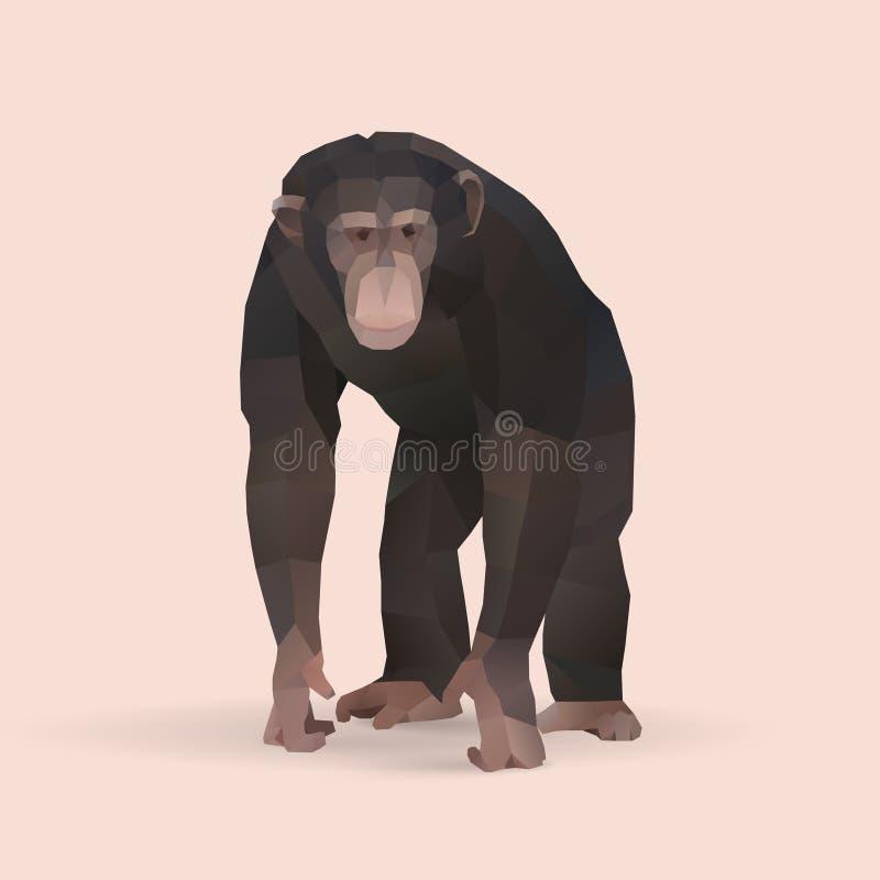 χιμπατζής διανυσματική απεικόνιση