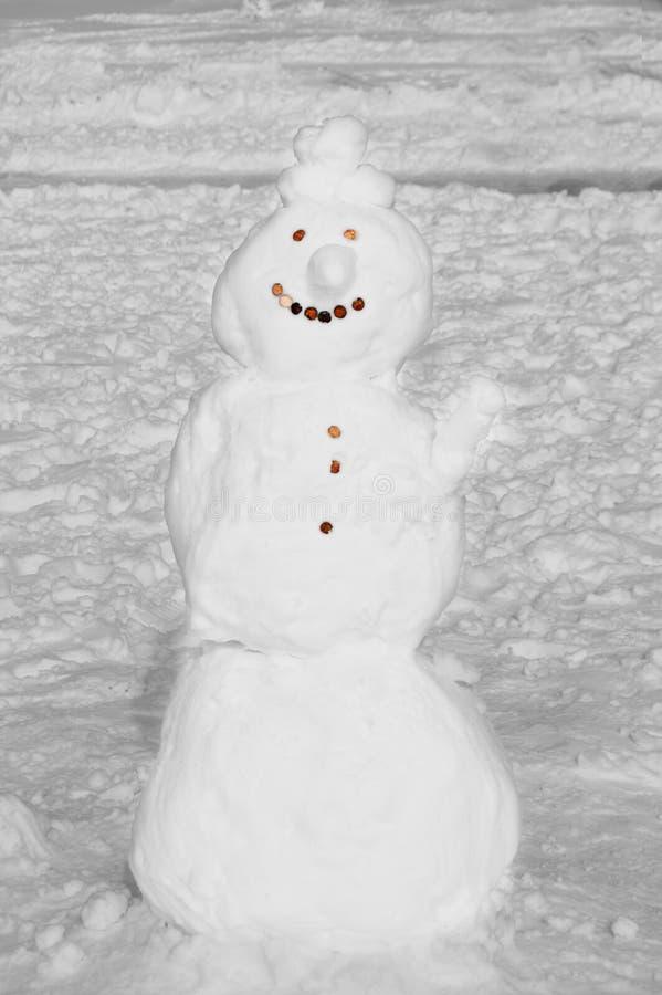 Χιονάνθρωπος με το πρόσωπο πενών στοκ εικόνες