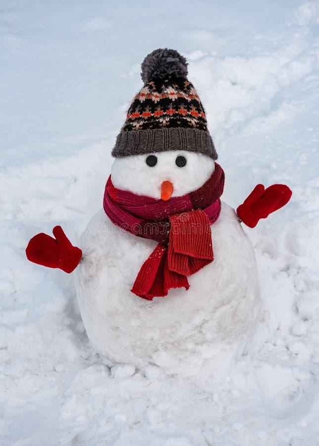 Χιονάνθρωπος χειμώνας με κόκκινο κασκόλ στοκ εικόνες