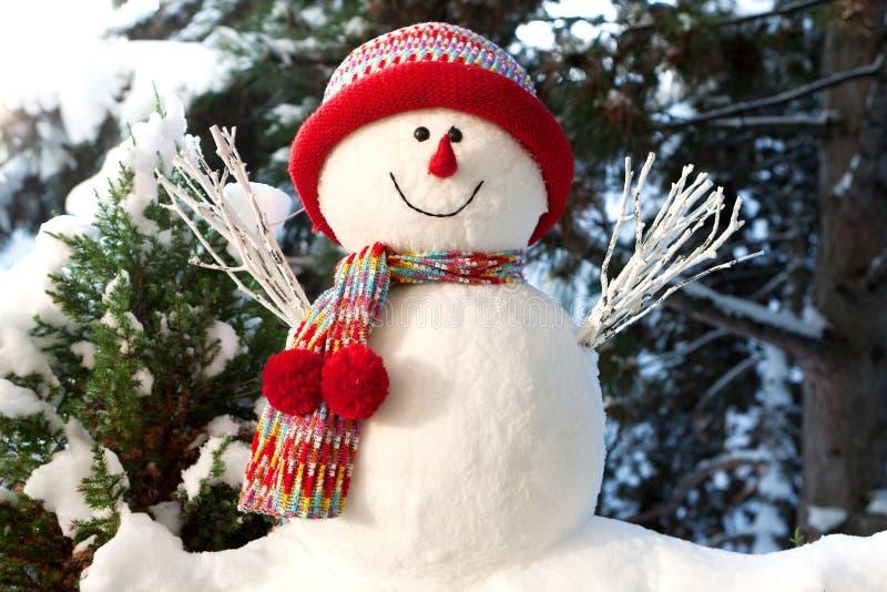 χιονάνθρωπος στοκ εικόνα