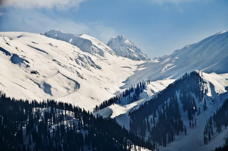 Χιονισμένα βουνά το χειμώνα, Gulmarg, Τζαμού και Κασμίρ, Ινδία στοκ εικόνα με δικαίωμα ελεύθερης χρήσης