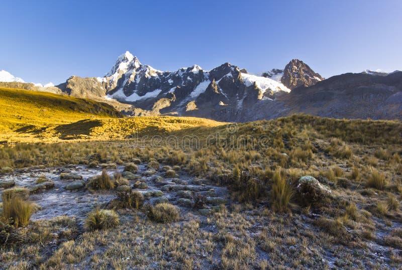Χιονισμένα βουνά των Άνδεων στην ανατολή και το παγωμένο λιβάδι χλόης στοκ εικόνες