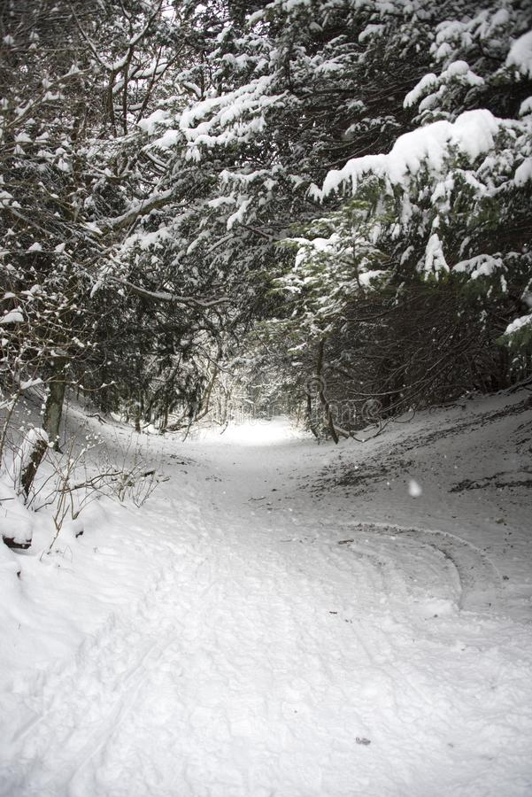 Χιονισμένη διαδρομή στοκ εικόνες