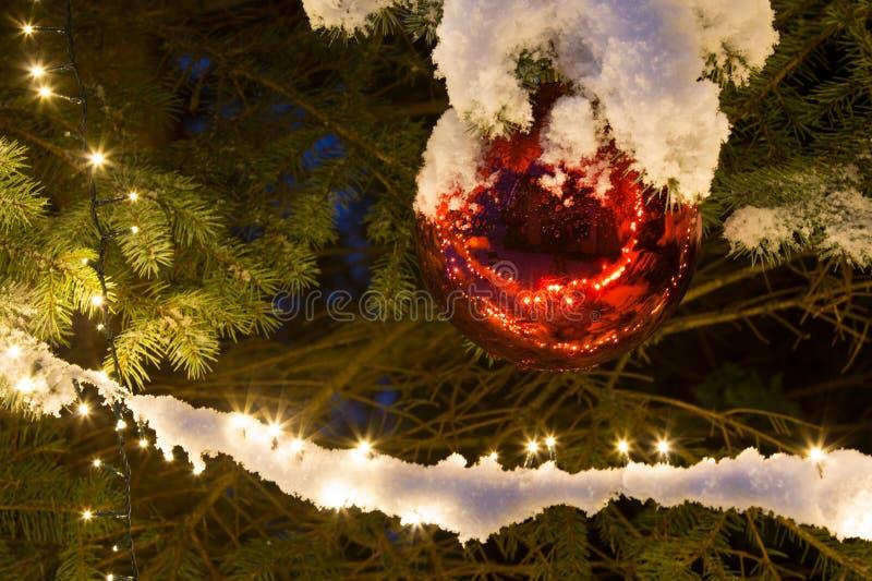 Χιονισμένο δέντρο πεύκων με το φωτισμό και την κόκκινη διακόσμηση Χριστουγέννων σφαιρών γυαλιού, υπαίθριους στοκ φωτογραφία