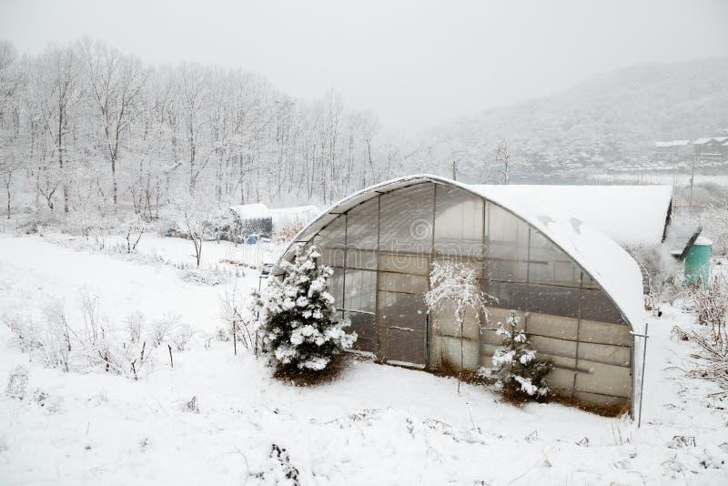 Χιονισμένο χωριό θερμοκηπίων και επαρχίας το χειμώνα στοκ φωτογραφίες με δικαίωμα ελεύθερης χρήσης