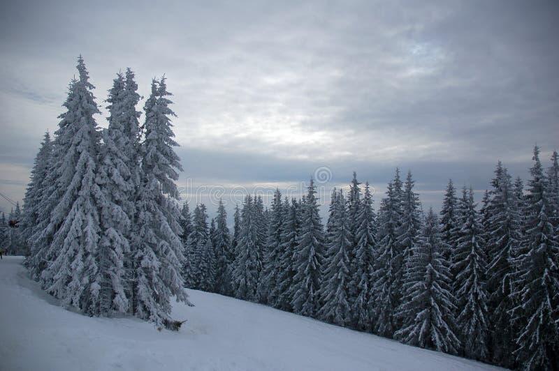 Χιονοδρομικό κέντρο 2 Bukovel στοκ εικόνα με δικαίωμα ελεύθερης χρήσης
